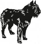 hond 0002