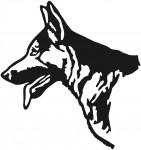 hond 0003