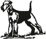 hond 0008