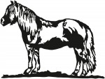 paard 0006