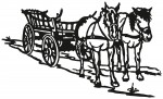 paard 0007