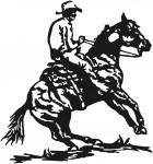 paard 0011