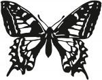 vlinder 0004