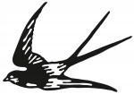 vogel 0003
