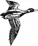 vogel 0005