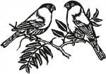 vogel 0008
