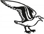 vogel 0013