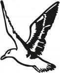 vogel 0014