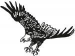 vogel 0016