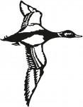 vogel 0017