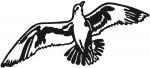 vogel 0019